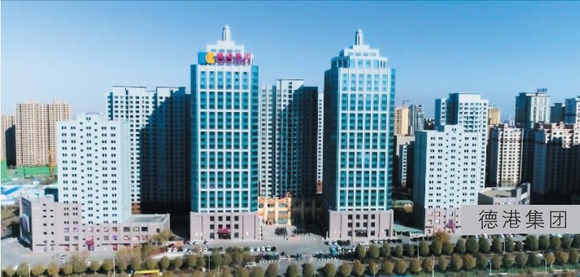 新疆德港投资集团