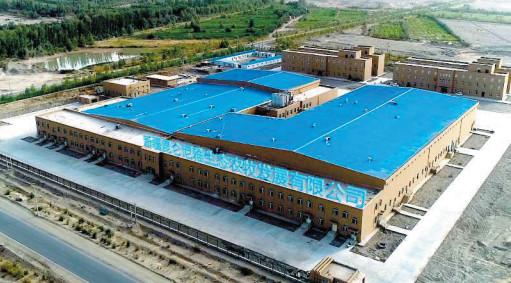 新疆海大集团